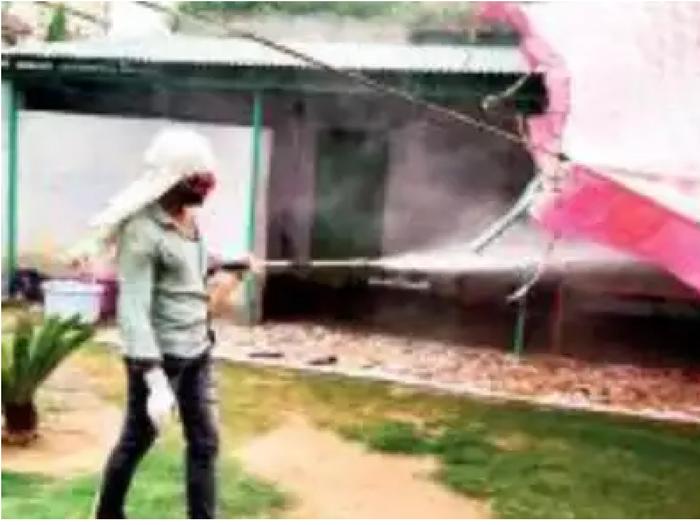 राजस्थान के इस गांव में 21 दिन में 21 मौतें, कारण जानने के लिए पहुंची मेडिकल टीम, जानें पूरा मामला