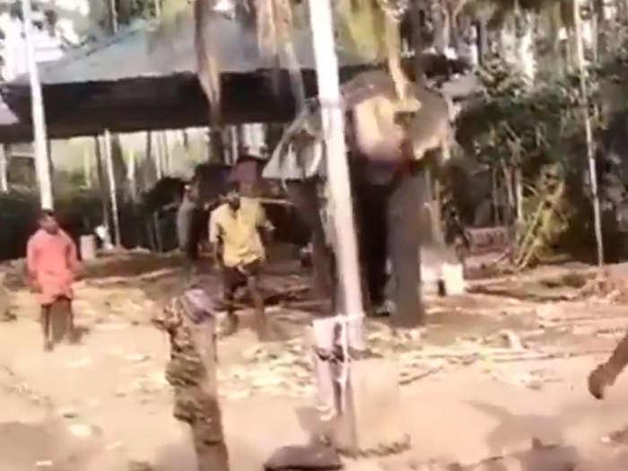 Elephant Playing Cricket: कभी देखा है हाथी को क्रिकेट खेलते? वीरेंदर सहवाग ने शेयर किया धांसू वीडियो