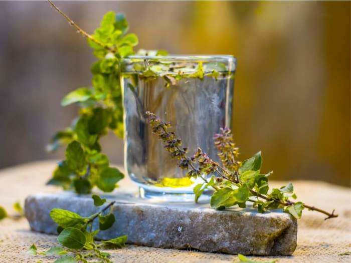 what are the health benefits of eating basil or tulsi leaves and how many leaves should be eaten daily in marathi