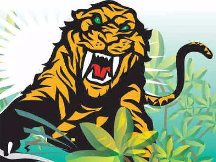 वाघाच्या हल्ल्यात दोघे गंभीर जखमी; झरी वनपरिक्षेत्रातील घटना