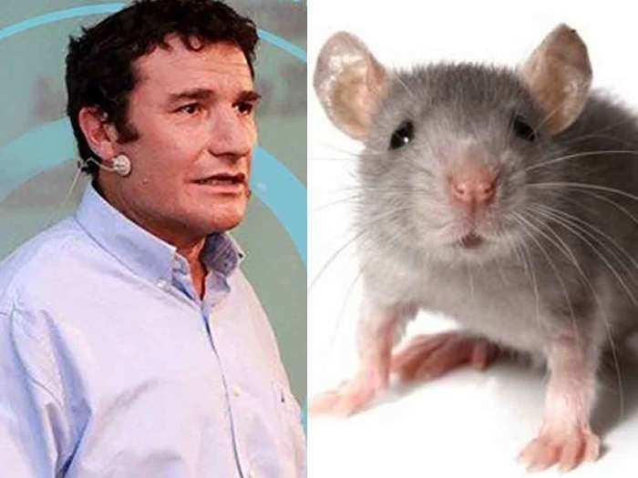 Haim Cohen mice