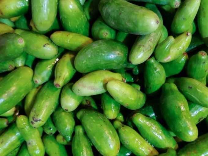 -ivy-gourd