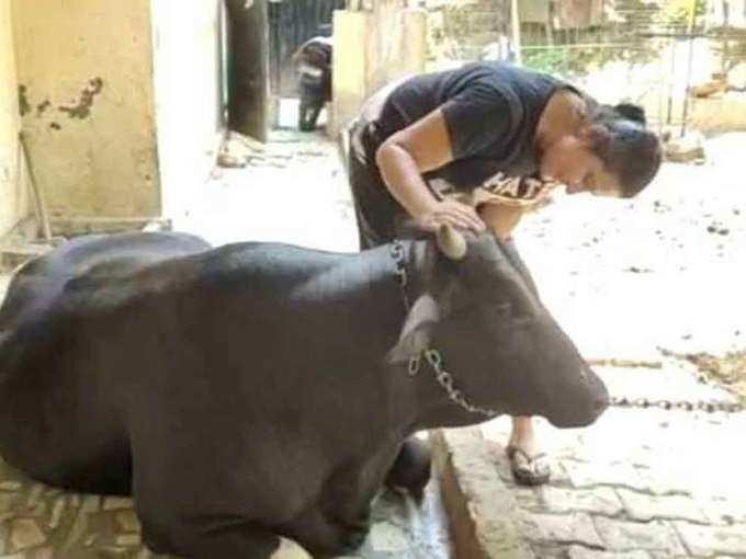 Gives children love like animals