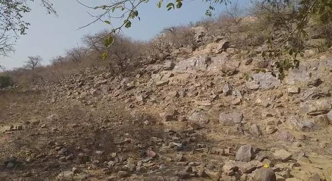 Mathura News: Illegal occupation of land mafia on 6958 square meter land of Govardhan mountain and forest department