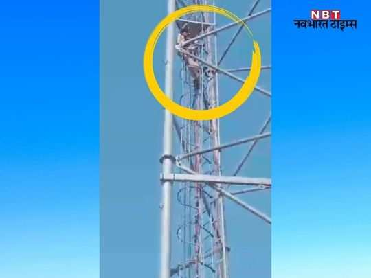 rajasthan news live update - 2021-06-12T195016.534