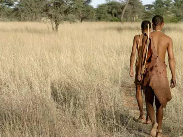 20 thousand years old hunter sans bushmen tribe of kalahari africa
