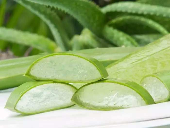 Special chemical found in aloe vera flowers
