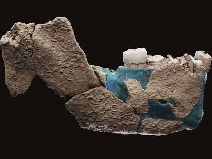 Israel Neanderthals (2).
