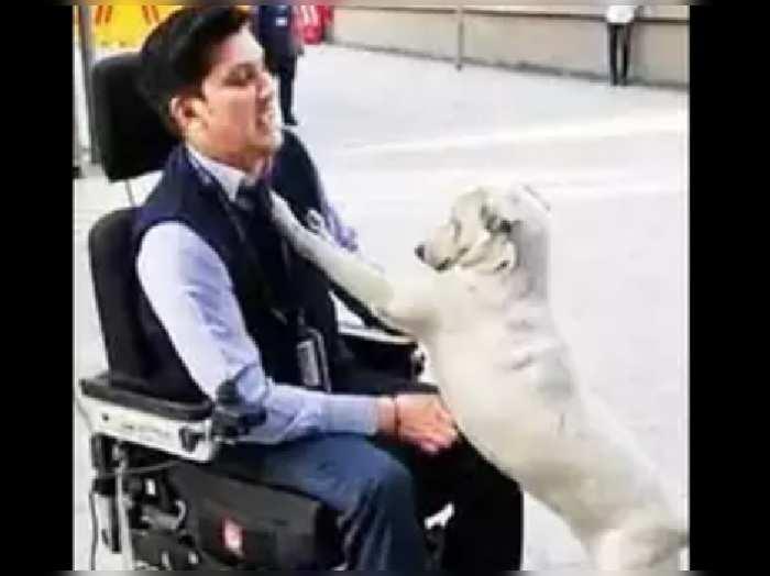 Man Reunites With Friendly Dog