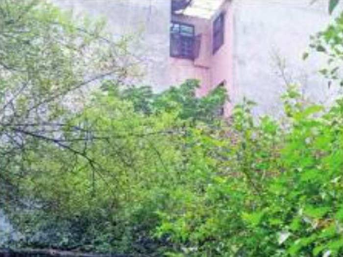 Delhi-Shelter-Home