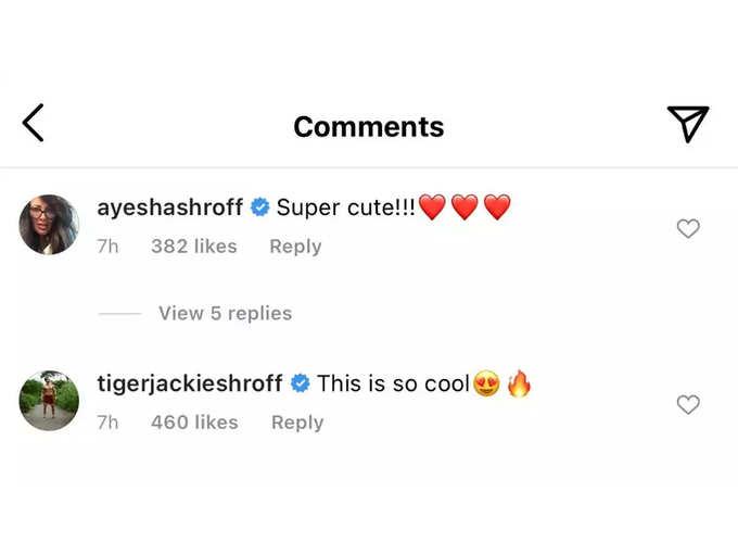 Tiger Shroff Comment