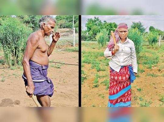Tamil Nadu: Son a Union minister, but L Murugan's independent mom and dad toil in fields
