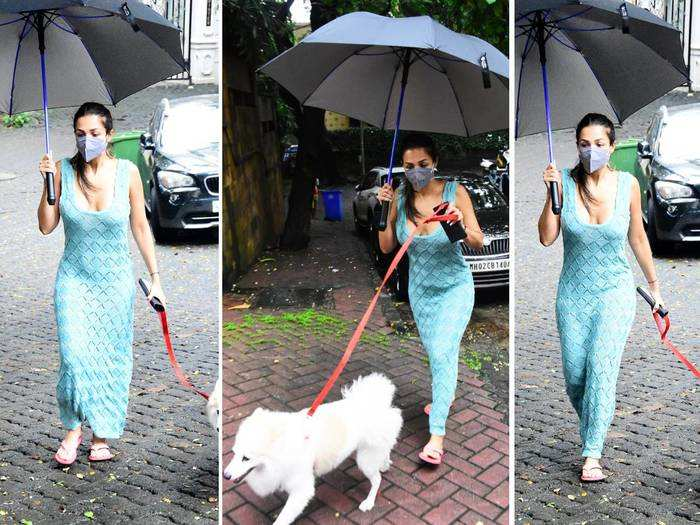 malaika arora morning walk with pet dog casper malaika arora spotted and click
