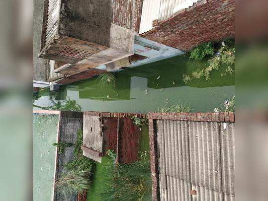 Water Logging Issues || Bhagya Vihar