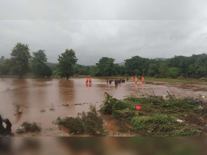 Revenue Minister Balasaheb Thorat has informed that 129 deaths have been reported due to rains in the state so far