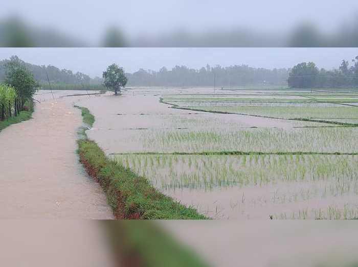 Rain Karnataka