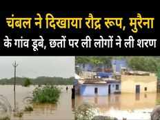 madhya pradesh flood devastation in villages situated on banks of chambal in morena see dreadful scene