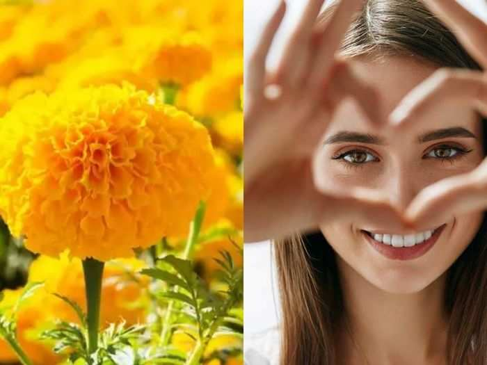 best ayurvedic herbs to improve eyesight naturally and know these medicine name