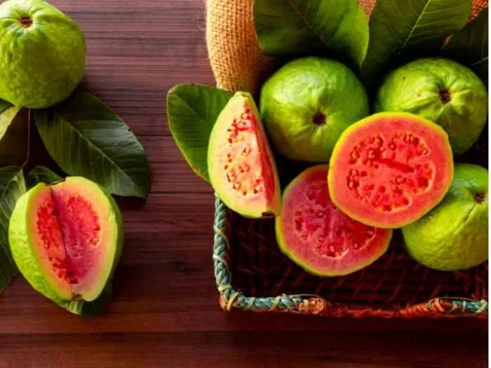 people who should who should not eat guava amrood and know the reason