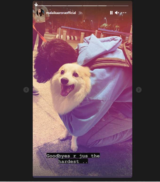 Malaika shared a photo of Arhaan bidding goodbye to their dog