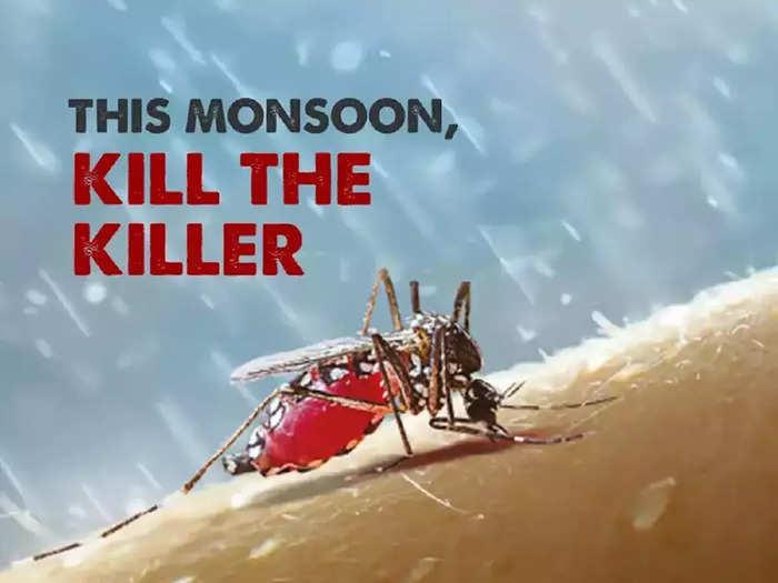 World Mosquito Day 2021: डेंग्यू व मलेरियापासून कसा बचाव करावा? जाणून घ्या महत्त्वपूर्ण टिप्स