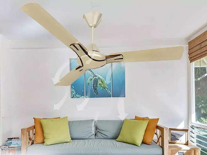 3 ब्लेड वाले इन फैन से कमरे को दें ताजा हवा, बिजली की भी करते हैं भारी बचत