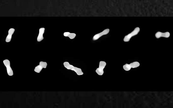 سیارک استخوان سگ