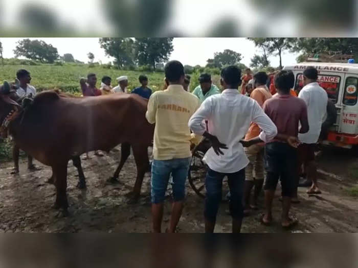 villagers had to carry the dead body by bullock cart