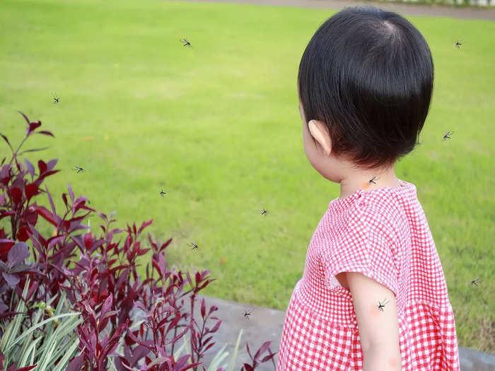diet for pediatric dengue patients