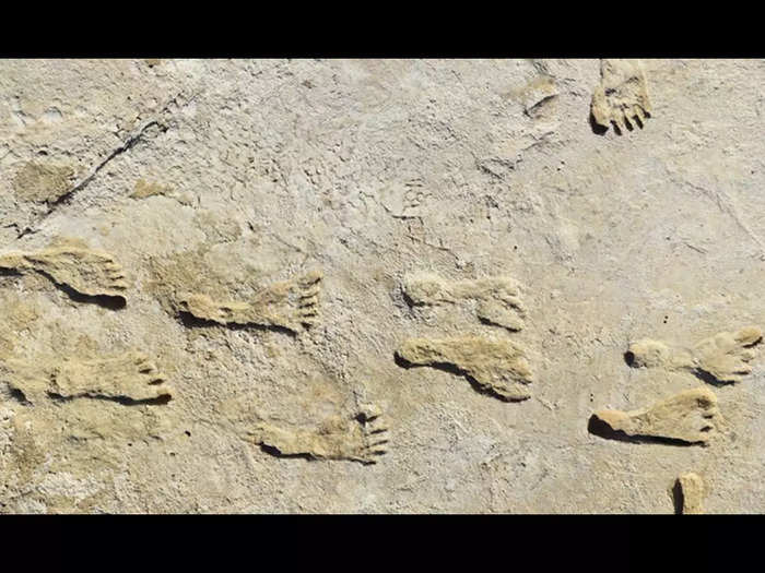 footprints 23000 years old found in mexico suggest humans migrated to america 10000 years before previously thought