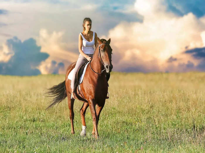 places to go for horse riding in india in hindi